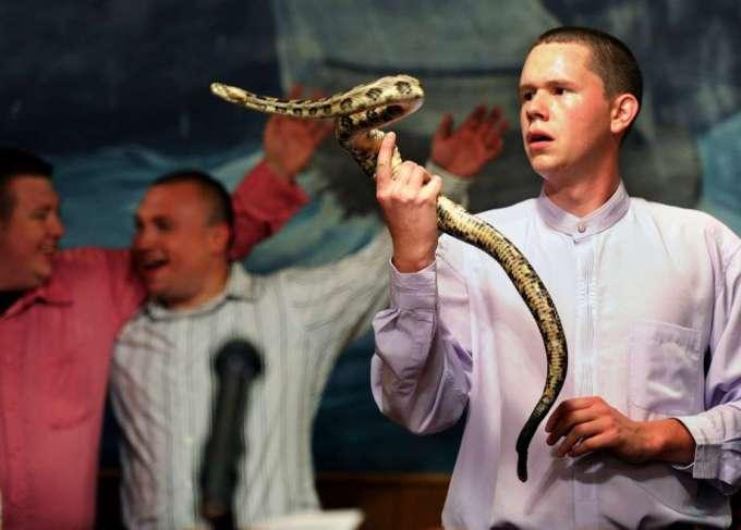 Snake hanlder